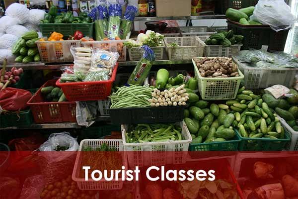 Tourist Classes