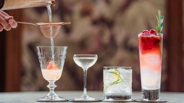 Cocktail Mixology And Basic Bartending Skills For Home Personal Use